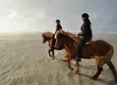 paardrijtochten1