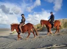 paardrijtocht op strand terschelling